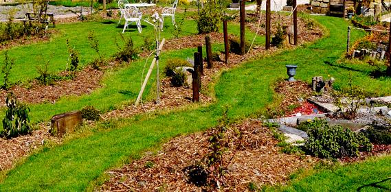 Jardin d 39 hubert - Comment congeler des haricots verts frais du jardin ...