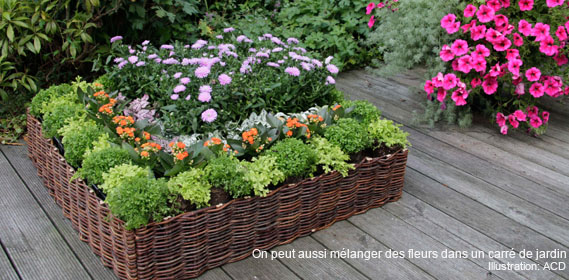 Jardin d 39 hubert for Carre potager en osier