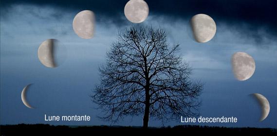 Jardin d 39 hubert - Lune montante et descendante ...