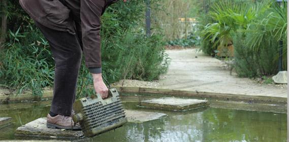 Jardin d 39 hubert for Conseil de jardinier
