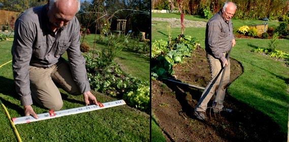 Jardin d 39 hubert for Allee de jardin potager